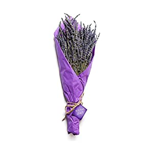 100% Natural Dried Lavender Bouquet from Ketchum Hollow, Grown in Idaho, USA, 2018 Harvest, Bundle is Carefully Packaged for Safe Shipping, Perfect for Weddings, Home Decor, Gifts, and More 56