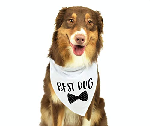 Moonwake Designs Best Dog Bandana, Wedding Dog Bandana, Bridal Party Dog Bandana, Wedding Photo Prop, Pet Scarf, Pet Accessories