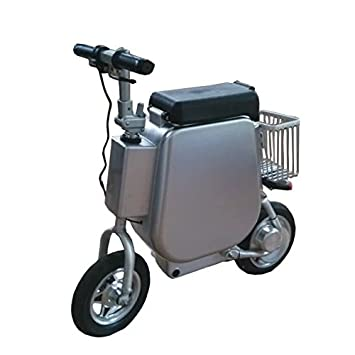 bicicleta eléctrica de tipo de maletas de viaje / bici eléctrica del tipo de maleta de
