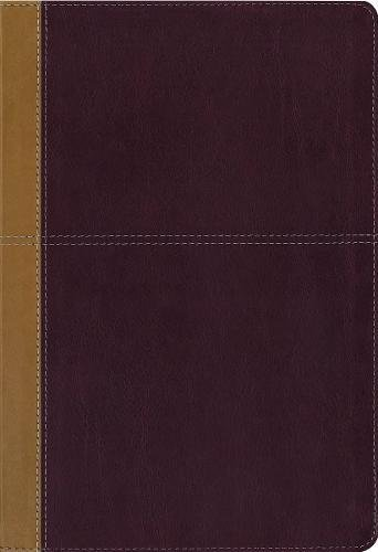 KJV, Amplified, Parallel Bible, Large Print, Leathersoft, for sale  Delivered anywhere in USA
