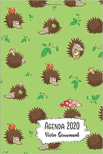 Agenda 2020 Vista Semanal: 12 Meses Programacion Semanal ...