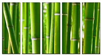 Bamboo Forest Print On Canvas, Forest Wall Art, Framed And Ready To Hang,