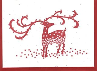 product image for Grow A Note® Holiday Oh Deer! Card 4-Pack