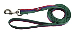 Hamilton Nylon Dog Lead with Swivel Snap and Reflective Threads, 1-Inch by 6-Feet, Green/Blue/Red