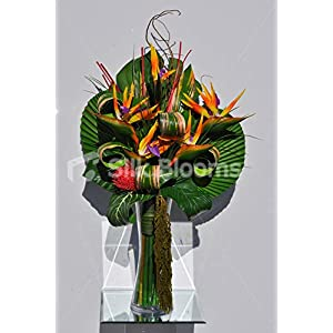 Silk Blooms Ltd Artificial Bird of Paradise and Protea Floral Arrangement w/Preserved Wood and Leaves 96