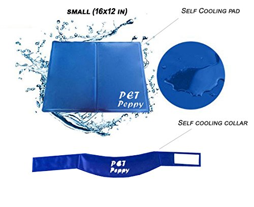 Cooling Pressure Activated Collar Valued product image