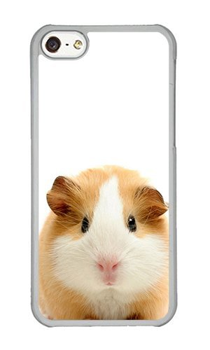 Reg Guinea Pig - iPhone 5C Case,VUTTOO® iPhone 5C Cover With Photo: Guinea Pig For Apple iPhone 5C - PC Transparent Hard Case