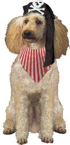 Pirate Pooch Pet Costumes (Pirate Pooch Dog Costume)