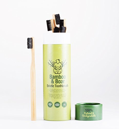 (Natural Bristle Bamboo Toothbrush - Totally Biodegradable and Planet-Based 6-Pack)