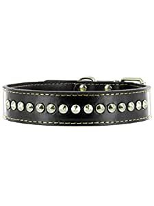 "Kakadu Pet Buster Leather Studded Dog Collar, 3/4"" x 17 1/2"", Black"