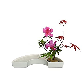 Amazon.com: Fenteer 2X Professional Japanese Ikebana Half-Moon Vase Flower Arranging Base Holder - White: Home & Kitchen