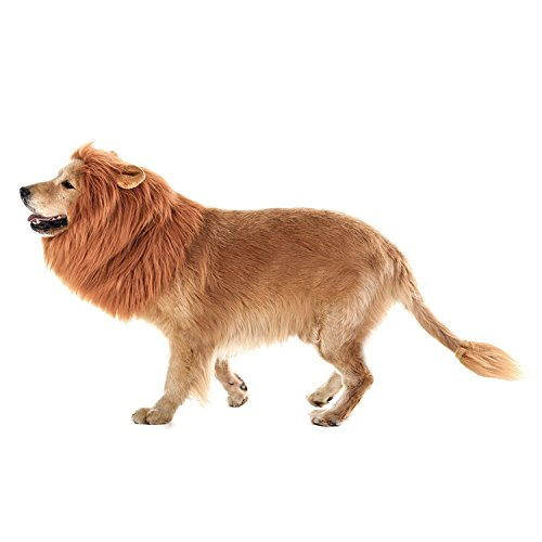 ICCKER Dog Lion Mane Halloween Costume Large Size - Hilarious Realistic & Funny Majestic Looking Hoods with Ear and Tails - Great Pet Gift Choice for Christmas,Pet Birthday Party - Spider Costume For Large Dogs