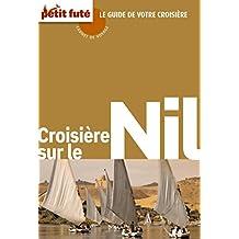 Croisière sur le Nil 2011 Carnet Petit Futé (Carnet de voyage)