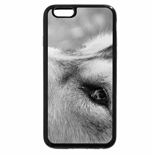 iPhone 6S Case, iPhone 6 Case (Black & White) - Wolf or dog, cant see, but its great, i think.