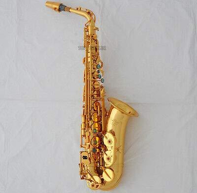 FidgetKute Professional GOLD New Alto Saxophone sax With ABALONE Keys High F# +Case from FidgetKute