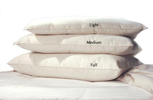 LIFEKIND Certified Organic Cotton Pillow Light Loft (Standard) - Perfect for Kids - Handmade in the USA