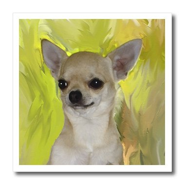 3dRose ht_4465_3 Chihuahua Portrait Iron on Heat Transfer Paper for White Material, 10 by 10