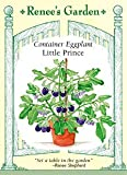 Eggplant Little Prince Container Seeds 30 Seeds