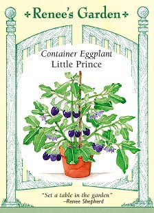 - Eggplant - Container - Little Prince Seeds