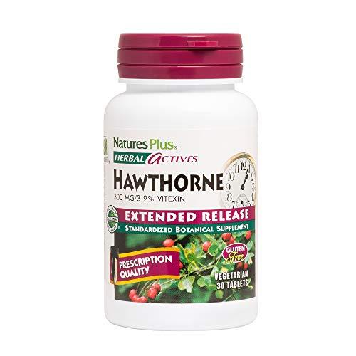 Natures Plus Herbal Actives Hawthorne – 300mg, 3.2% Vitexin, 30 Vegan Tablets – Heart Health Support Supplement, Blood Pressure Support, Antioxidant – Vegetarian, Gluten Free – 30 Servings For Sale