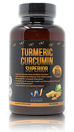 Turmeric Curcumin Supplement Capsules - 95% Curcuminoids & BioPerine Black Pepper Extract 1300 mg - Advanced Absorption, Anti-Inflammatory, Weight Loss, Cardiovascular & Joint Support - 90 Pills