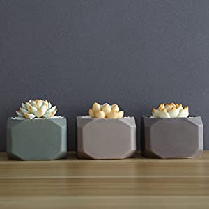 Danmu 3pcs a Set Ceramic Geometric Planter for Succulent and Small Plants (Plants Not Included) 22