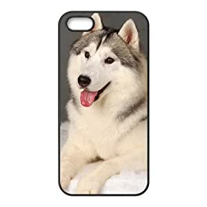DIY Case for Iphone 5,5S - Staying adorable sled dogs ( WKK-R-527181 )