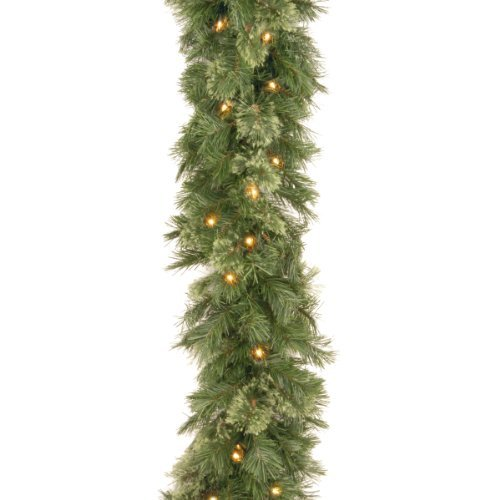 National Tree 9 Foot by 10 Inch Wispy Willow Garland with 50 Clear Lights (WO1-9ALO-1) by National Tree Company