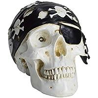 HOMESHINE Resin Wireless Portable Life Size Pirate Skull Bluetooth Speaker with Night Light