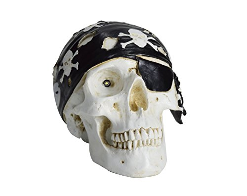HOMESHINE Resin Wireless Portable Life Size Pirate Skull Bluetooth Speaker with Night (Dreamland Halloween)