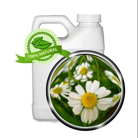 CHAMOMILE-TRINITY-TM-WILD-CHAMOMILE-Herbal-Oil-Extract-64oz-very-dry-cracked-skin-dermatitis-irritated-skin-rashes-bedsores-sunburn-ulcers-bug-bites