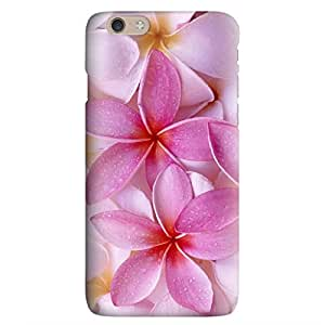 Iphone 6 6S Case,JIANSE Stylish Full Protective Slim Fit Durable Flexible Pink Pastel Hydrangea Floral Pattern Hard Back Cover Case Bumper for Iphone 6 6S 4.7 inch