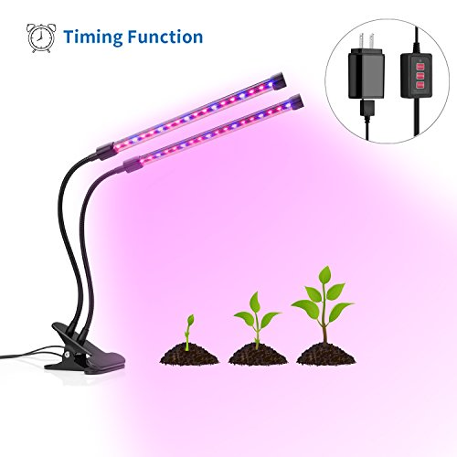 seed growing timer - 2