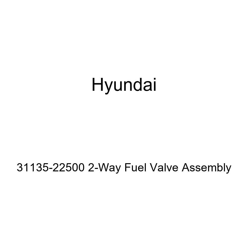 Genuine Hyundai 31135-22500 2-Way Fuel Valve Assembly