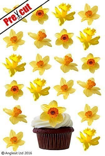 24 X DAFFODIL FLOWERS EDIBLE WAFER /RICE PAPER CUPCAKE CAKE TOPPERS BIRTHDAY PARTY EASTER DECORATION