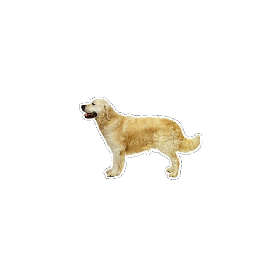 GOLDEN RETRIEVER   Dog Decal   sticker car got window