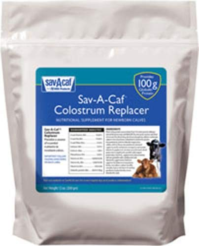 Milk & Co. 633176 Sav-a-CAF Colostrum Replacer 100, 350G