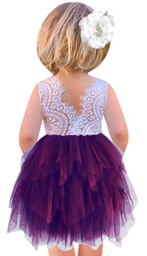 Plum Girls Dress (2Bunnies Girl Peony Lace Back A-Line Tiered Tutu Tulle Flower Girl Dress (Plum Sleeveless,)