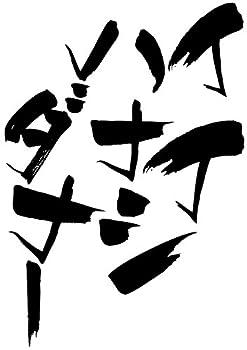 隼風Tシャツ イイハナシダナー(130サイズTシャツ白x文字黒)