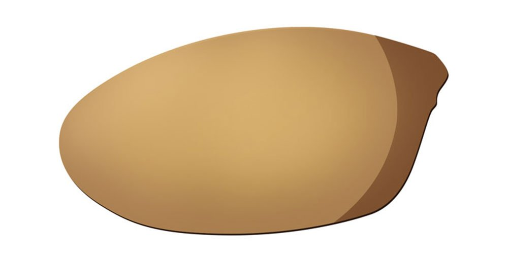 Native Sunglasses - Silencer Replacement Lenses / Frame: Lens: Replacement Lens: Polarized Bronze