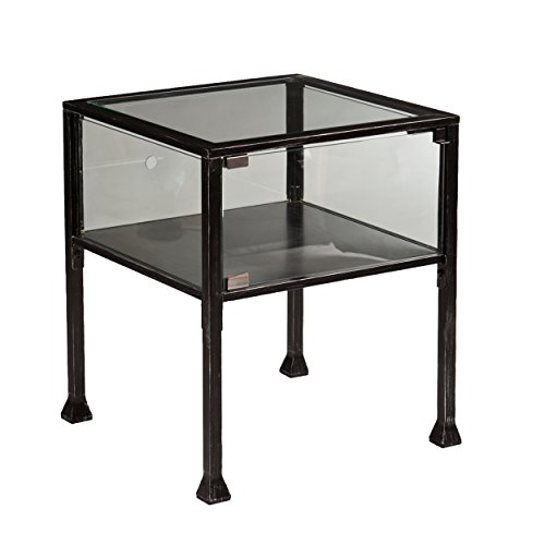 Southern Enterprises Terrarium Display Side End Table, Black with Silver Distressed Finish