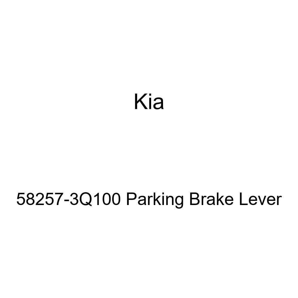 Kia 58257-3Q100 Parking Brake Lever