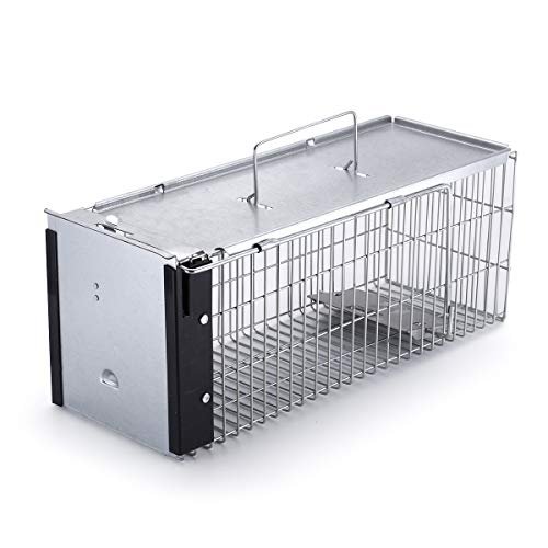 - Faicuk Heavy Duty Squirrel Trap Chipmunk Trap and Other Similar-Size Rodents (Medium)