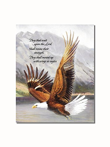 - American Bald Eagle in Flight Christian Religious Wall Picture 8x10 Art Print
