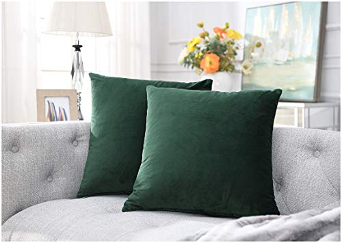 Comfortland Pack of 2, Soft Velvet Soild Decorative Square Throw Pillow Covers Set Cushion Covers Cozy Pillowcase for Couch Bed Sofa 18 x 18 Inch 45 x 45 cm,Amy Green ()
