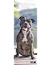 Staffordshire Bull Terrier Slim 2022 kalender
