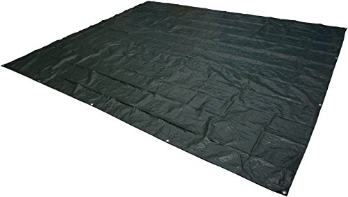 Black Rain Rug (AmazonBasics Waterproof Camping Tarp - 10 x 12 Feet, Black)