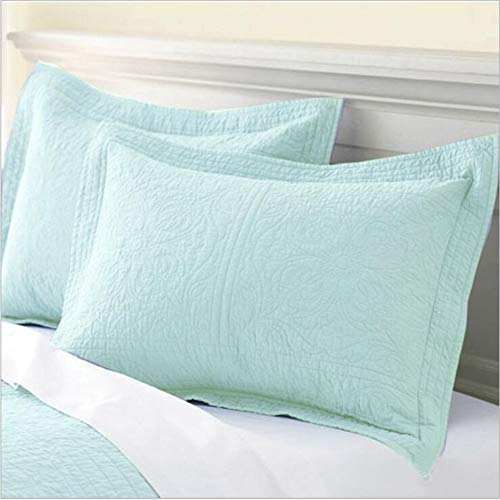 - WINLIFE 100% Cotton Quilted Pillow Sham Floral Printed Pillow Cover (Pale Turquoise)