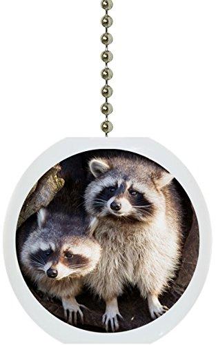Raccoons inツリーソリッドセラミックファンプル   B072J6M8GH