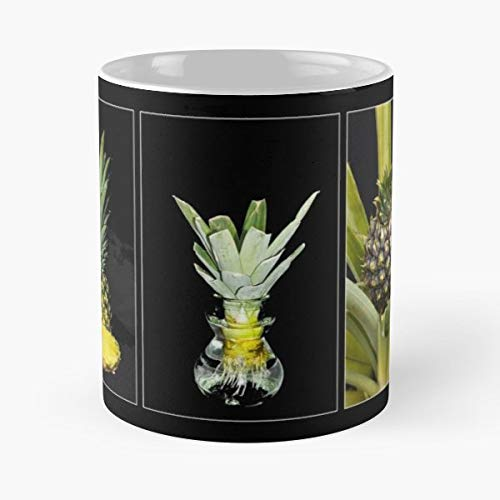 (Moneypenny Pineapple Fruit Collage - 11 Oz Coffee Mugs Unique Ceramic Novelty Cup, The Best Gift For Holidays.)